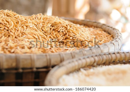 paddy rice and rice - stock photo