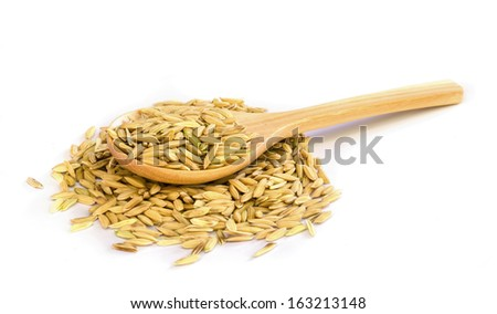 paddy rice seed  and wooden spoon on white background.