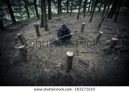 Pagan druid in the forest - stock photo