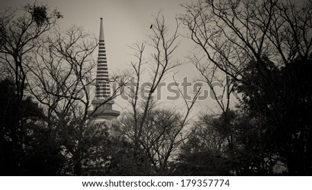 Pagoda in the shadows of the trees look myste - stock photo