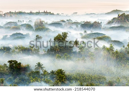 Pagodas in the mist at the northern Rakhine State, Myanmar  - stock photo