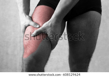 Quadriceps Stock Images Royalty Free Images Amp Vectors