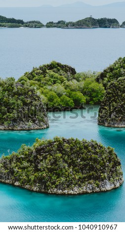 papua barat stock images royalty free images vectors