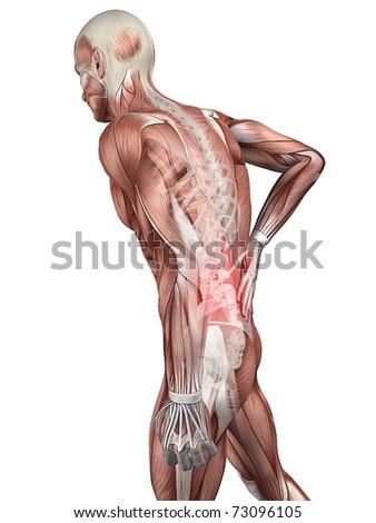 painful back illustration - stock photo