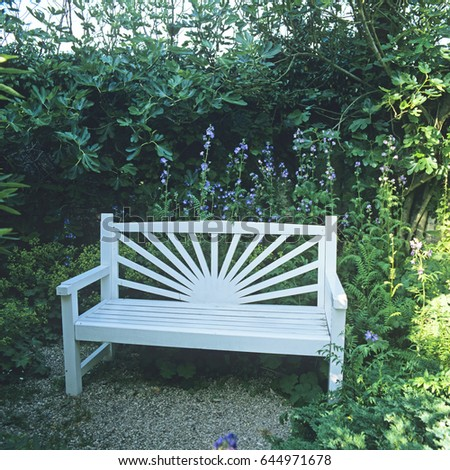 Painted Bench In A Shady Garden