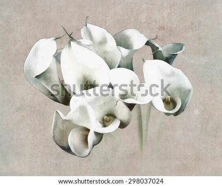 Painted calla bouquet on watercolor painted background - stock photo