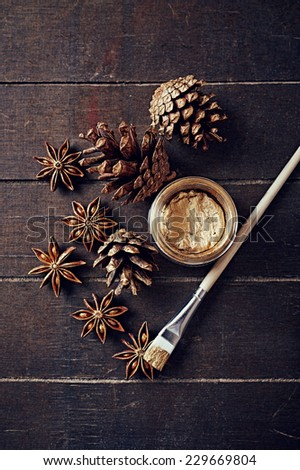 Painted cones and star anise for Christmas - stock photo