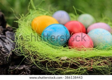 Painted eggs in nest