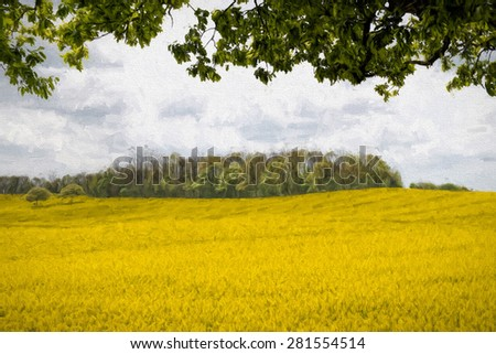 Painted view of a Rapeseed Field from the shade of a tree - stock photo