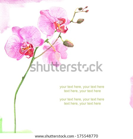 Painted watercolor card with orchid and place for text - stock photo