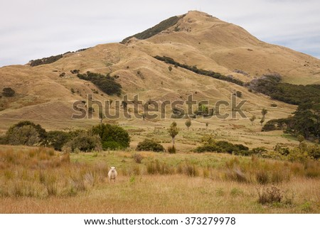 painterly interpretation of dry summer pastoral farming hills, Tolaga Bay, East Coast, North Island, New Zealand
