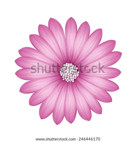 Painting Flower pink color