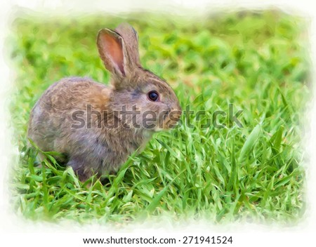 painting of a little rabbit in green grass - stock photo