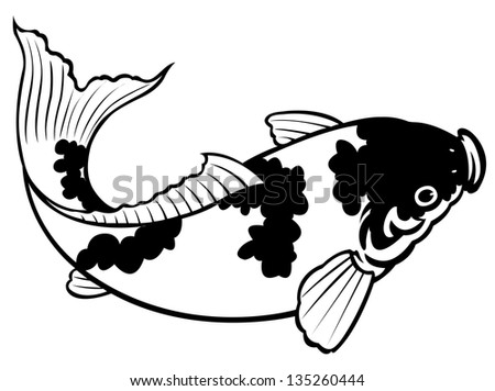 painting of carp fish on white background for coloring - stock photo