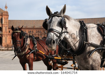 "Pair horses with coach against ancient palace on ""Plaza de Espana"", Seville, Spain - stock photo"