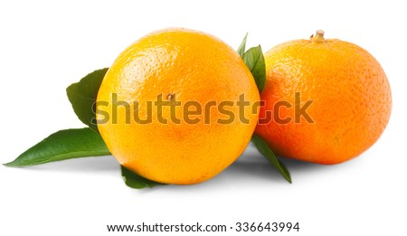 pair of fresh mandarin oranges with stems and green leaves