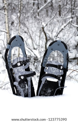 pair of snow shoes planted in the snow - stock photo
