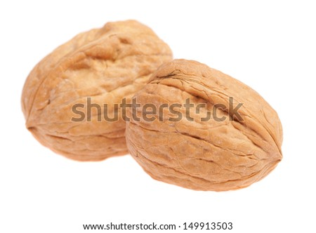 pair of walnuts isolated on a white background