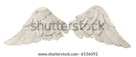 Pair of white wings over white - stock photo
