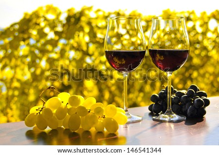 Pair of wineglasses and bunch of grapes. Lavaux region, Switzerland  - stock photo