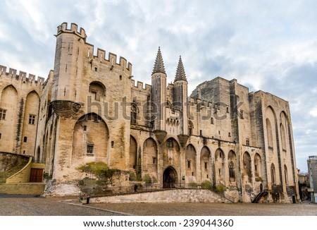 Palais des Papes in Avignon, a UNESCO heritage site, France - stock photo