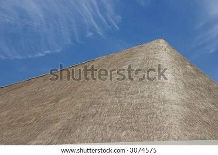 Palapa roof against blue sky with space for text.