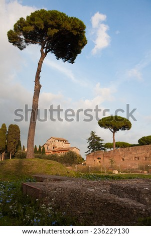 Palatine Hill, the centermost of the Seven Hills of Rome and is one of the most ancient parts of the city. - stock photo
