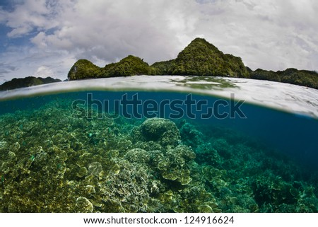 Palau's rock islands protect a large amount of delicate and shallow coral reefs.  The reefs act as a nursery for fish that eventually make their way out to the barrier reef as adults. - stock photo