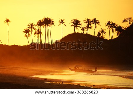 PALAWAN/PHILIPPINES - CIRCA DECEMBER 2015: Palms in back light at Sunset in Nacpan Beach near the city of El Nido