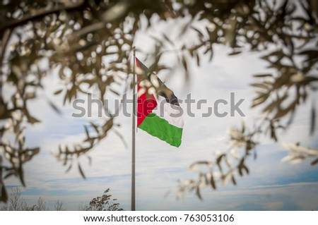 Palestinian Flag Seen Through Olive Tree Stock Photo Download Now