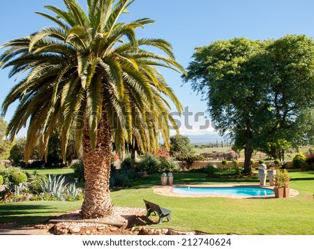 Palm and Swimming Pool in Sout Africa Countruside - stock photo