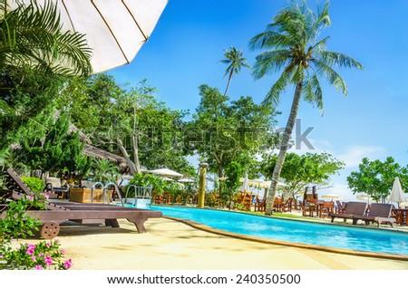 Palm at Luxury swimming pool with sunbed, Phi Phi Island, Phuket area, Thailand - stock photo