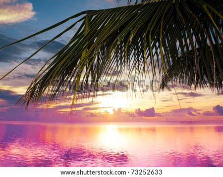 Palm Beach Sunset - stock photo