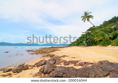 Palm beach, Thailand - stock photo