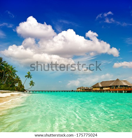 palm beach. tropical island landscape. turquoise water and cloudy blue sky