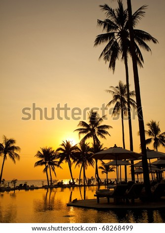 Palm forest silhouettes on sunrise - stock photo