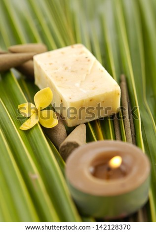 Palm Frond with flower and soap ,candle