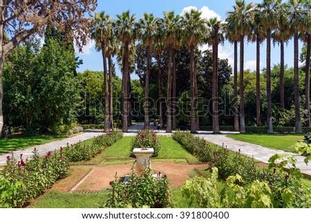 Palm garden in center of Athens, Greece - stock photo