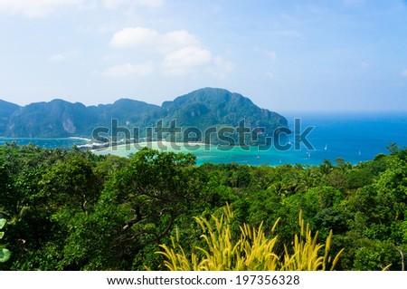Palm Island Vacation Wallpaper  - stock photo
