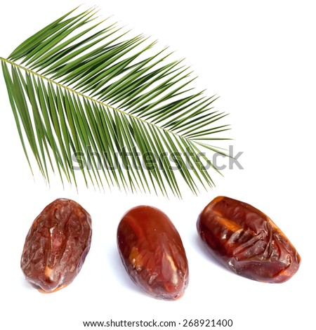 Palm leaf and ripe dates isolated on the white background - stock photo