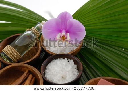 palm leaf and spa setting - stock photo