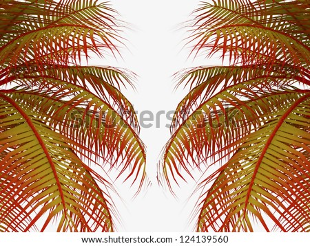 Palm leafs in red color on white background - stock photo
