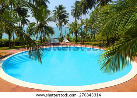 palm leaves in front of the swimming pool by the sea on a tropical resort - stock photo