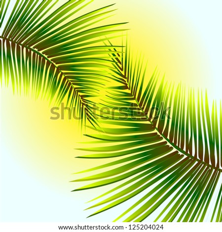 Palm leaves in the sun. raster - stock photo