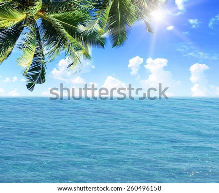 Palm leaves over the tropical beach scenery - stock photo