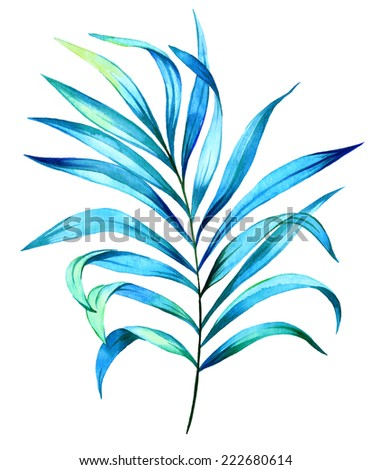 palm leaves. watercolor illustration. - stock photo