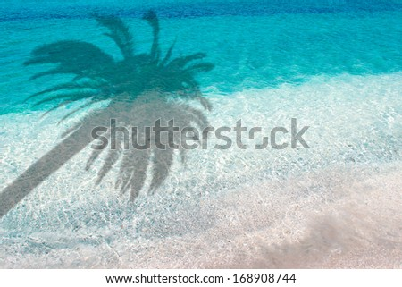 palm shadow over turquoise water in the foreshore - stock photo