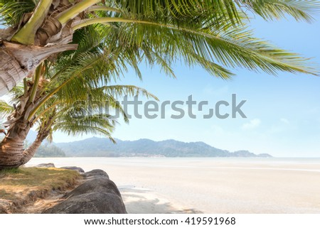 Palm tree and beach on tropical island in the morning. - stock photo