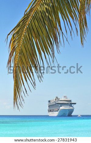Palm tree and cruise ship in background - With selective focus - stock photo
