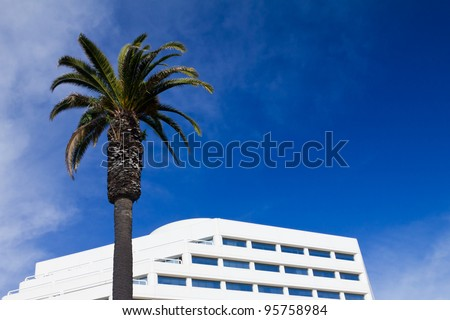 Palm tree and white office building isolated against blue sky background - stock photo